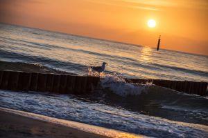 Urlaub_Ostsee-172.jpg